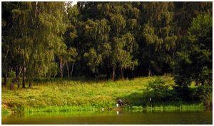 Рыбалка в тиши  и безлюдье