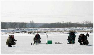 Уклейка  в озёрах и водохранилищах  на исходе зимы