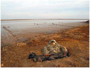 Дневник гусиной охоты