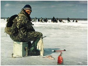 Донкой со льда