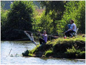 Привлечение рыбы  к месту ловли