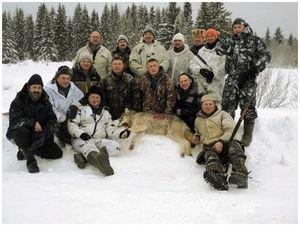 Идет охота на волков