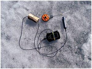 Электроника в лунке