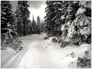 Ночлег на снегу