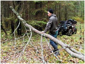 Охотничье хозяйство  в ракурсе  регионального  госчиновника