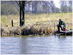 Весенняя поплавочная ловля