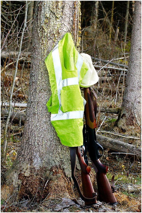 Безопасность на охоте