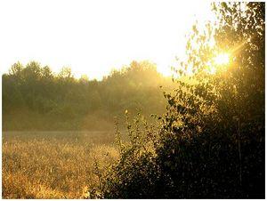 Чем регулируются зоны  охраны охотничьих ресурсов?