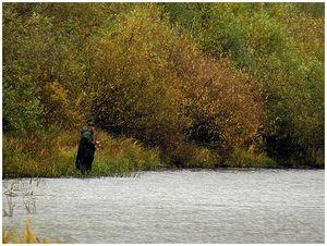 Осенний голавль