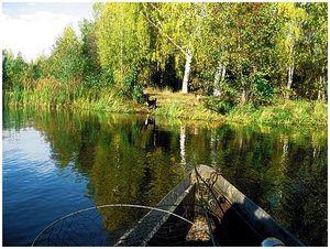 Рыбалка в золотую осень