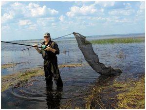 В режиме наводнения