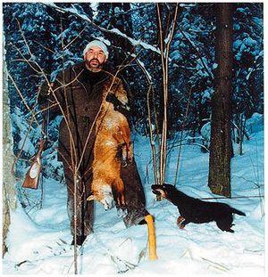 Будни ипраздники норной охоты