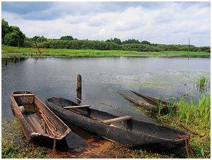 «Чёрные» лодки на чёрной воде…