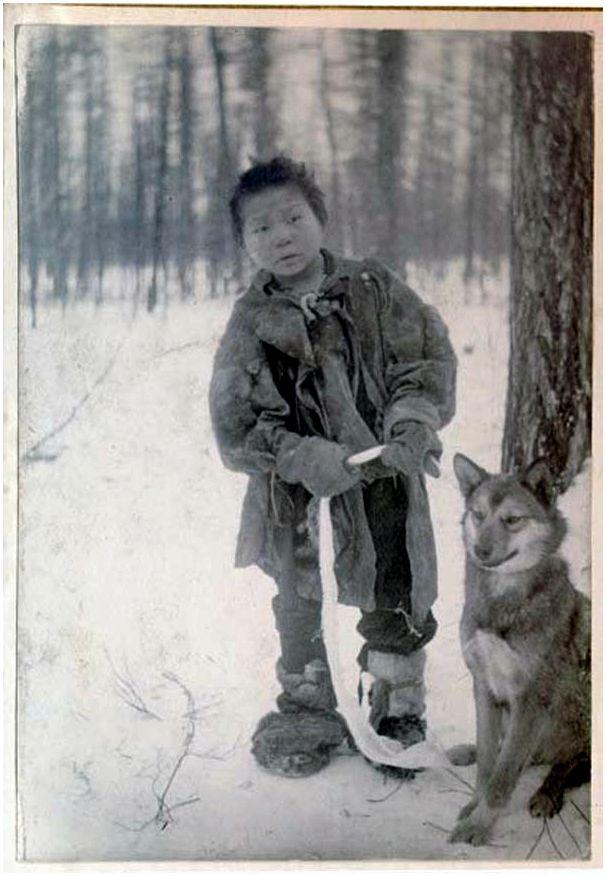 Какая лайка нужна якутскому охотнику?