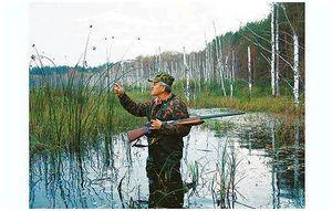 Корневой стержень любительской охоты