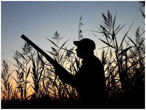 Охота с зачехленным ружьем