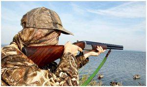 Оружие для охоты на гусей