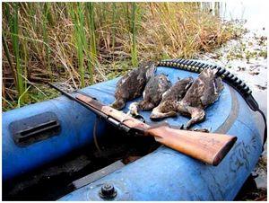 Папа, почему мне нельзя охотиться?