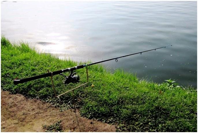 Лучшая телескопическая удочка: рыба где бы вы ни были