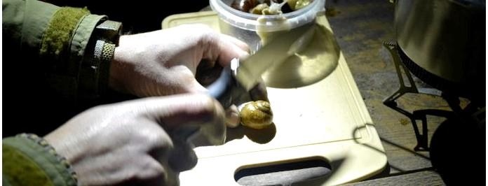 Употребление в пищу мяса улиток и слизней, рецепты блюд из улиток и слизней. Экстремальная кухня.