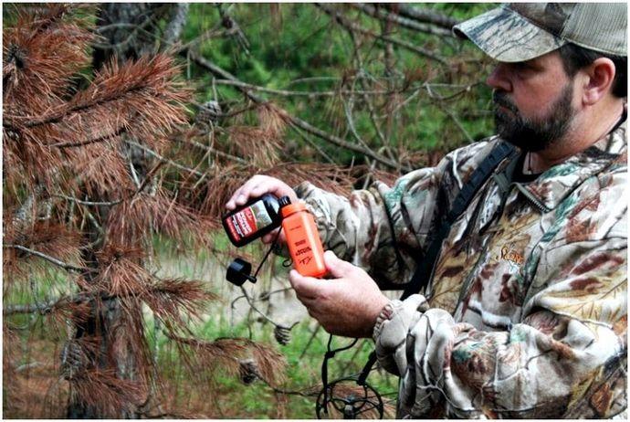 Лучший запах оленей: обзор лучших аттракционов оленей для вашей следующей охоты