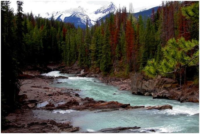 Как выковать реку: полное руководство о том, как оставаться сухим (в основном)