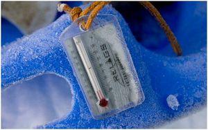 Термометр для рюкзака: 6 дешевых вариантов для вашего следующего похода
