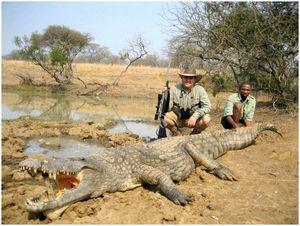 Советы по охоте на крокодилов: возьмите динозавра домой