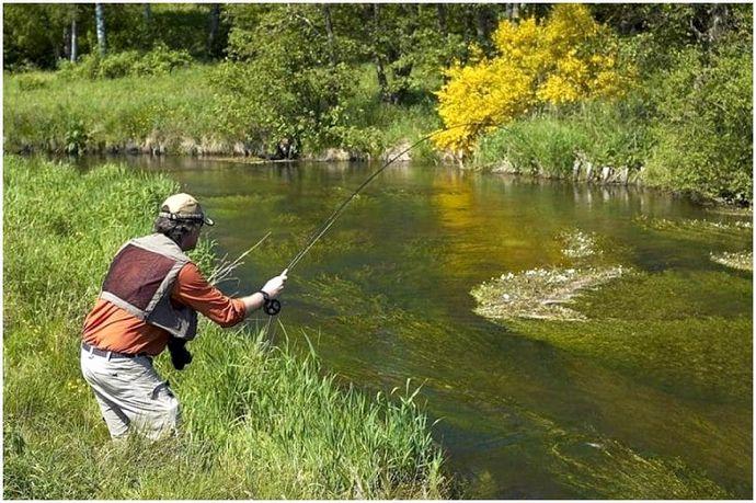 Как ловить рыбу: эффективные советы и хитрости при ловле
