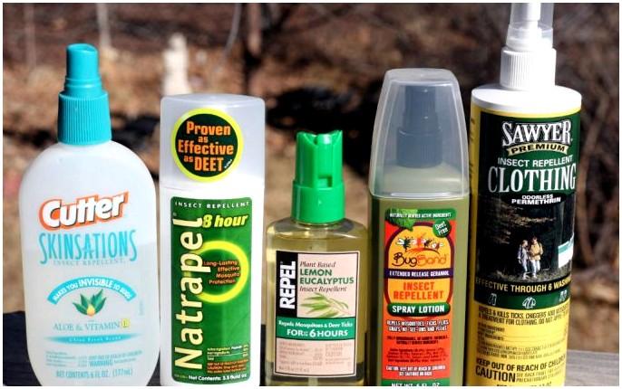Лучшее средство от насекомых: вы можете наслаждаться на открытом воздухе без следов укуса