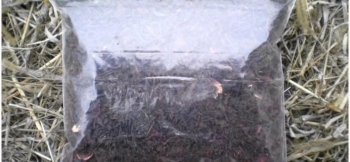 Универсальный пакет для замораживания как емкость для сбора, хранения, транспортировки и переноски воды в наборе выживания.