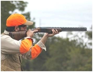 Best Over Under Shotgun: 7 вариантов хорошей охоты