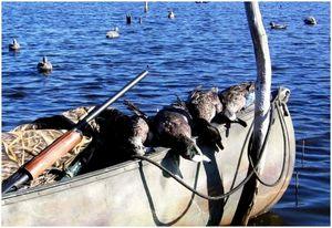 Утиное охотничье каноэ: основные советы и хитрости