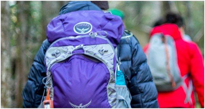 Как выбрать лучший рюкзак для коротких прогулок: основные функции, советы и отзывы