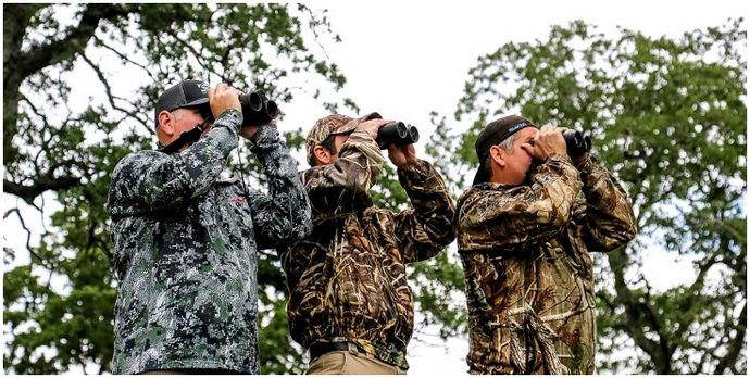 Советы по охоте на кабанов: обратный отсчет