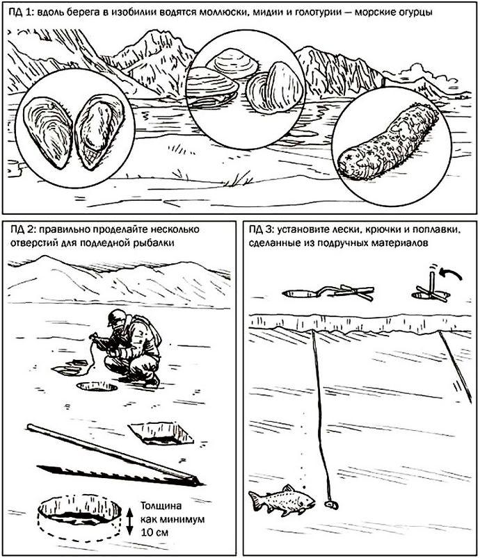 Добыча пропитания для выживания при минусовых температурах в северных и арктических условиях, мидии, моллюски, морские огурцы, ловля рыбы.