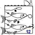 Естественная наживка для рыбной ловли при выживании в экстремальных условиях и аварийной ситуации, поиск и добыча наживки для ловли рыбы, способы насадки на крючок.