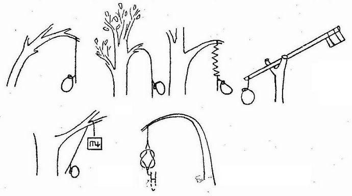 Действующие элементы простых ловушек, вздергивающие петли, падающие и раскачивающиеся грузы, гибкие ветки.