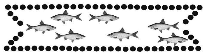 Простые ловушки на рыбу, изготовление простейшей верши, устройство загонов для ловли рыбы в экстремальной и аварийной ситуации.