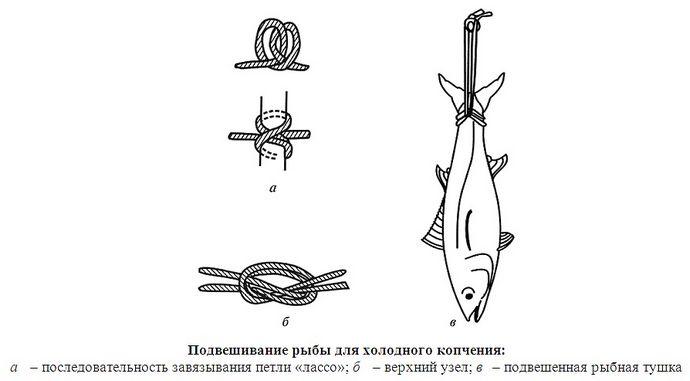 Способы подвешивания и подпетливания рыбы, мяса, птицы и сала для копчения, выбор шпагата и веревки.