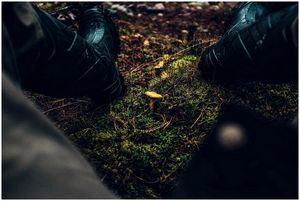 Лучшие охотничьи ботинки: сохраняйте ноги в течение многих лет