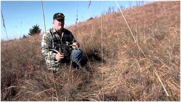 Советы по охоте на оленей: что нужно знать, чтобы выжить, чтобы выжить