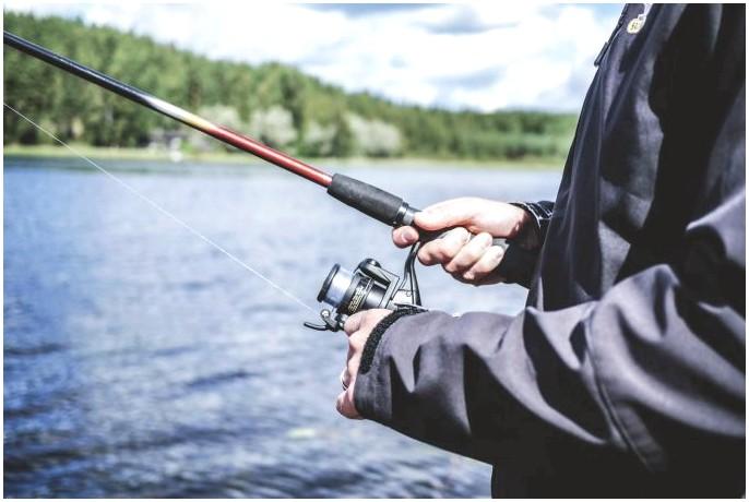 Лучшие рыболовные катушки: руководство для начинающих о том, что вы хотите в хорошей катушке
