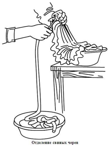 Натуральные кишки для изготовления домашних колбас, выбор, очистка, промывание водой, выворачивание, засолка и сушка.