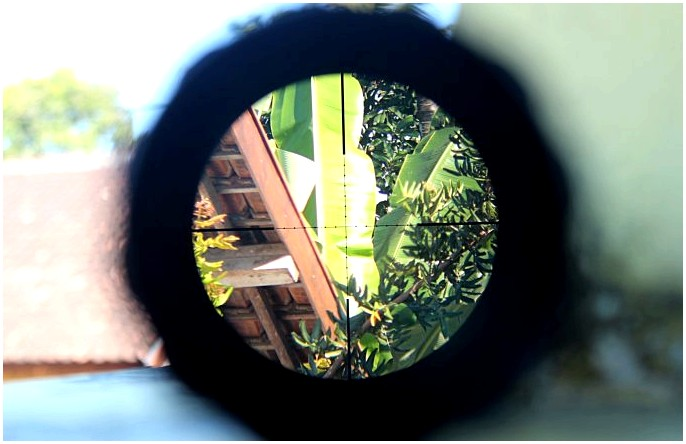 Лучший ассортимент винтовок: улучшенные охотничьи игры