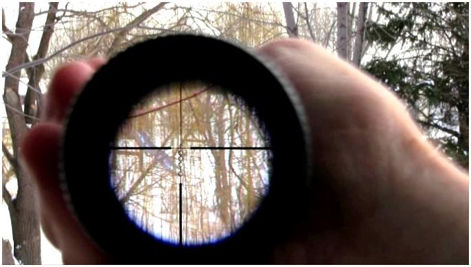 Лучший прицел для винтовки 22: установите правильные виды и сделайте снимок