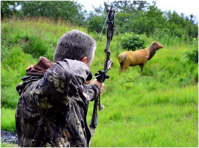 Как сделать лук: полное руководство по стрельбе из лука