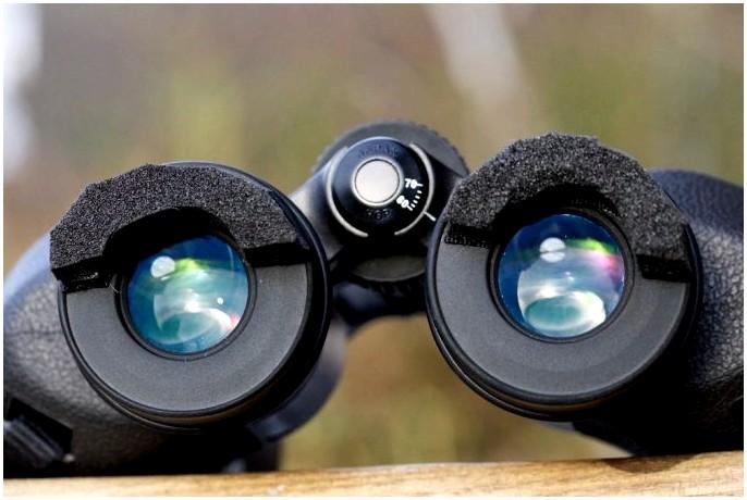 Лучший бинокль для наблюдения за птицами: 8 продуктов, чтобы посмотреть, прежде чем смотреть!