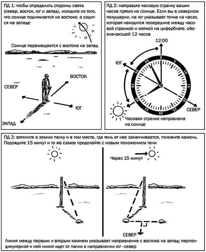Ориентирование на местности по расположению природных объектов, по Солнцу и звездам.