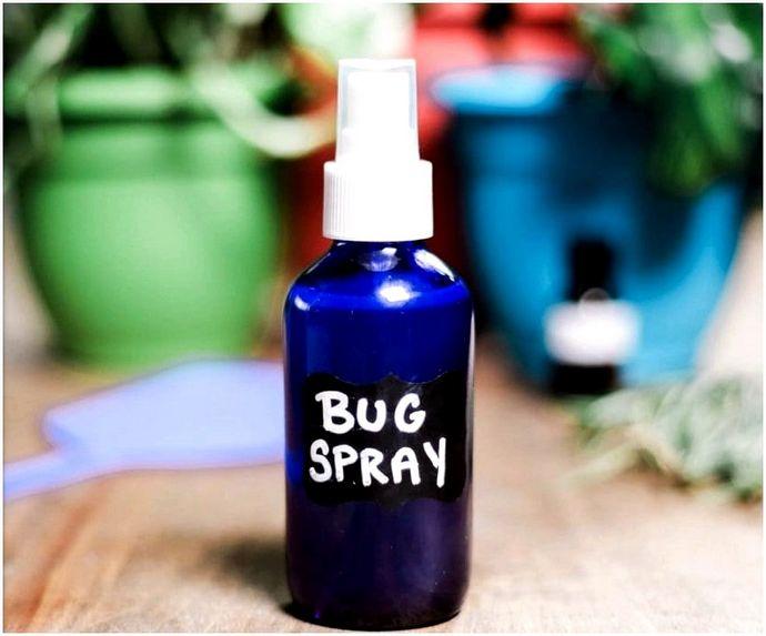 Домашнее средство от насекомых: советы, чтобы держать насекомых подальше